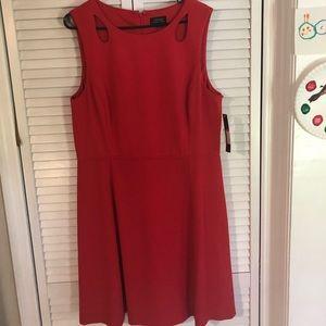 Tahari Dresses - NWT beautiful Tahari sleeveless dress 16